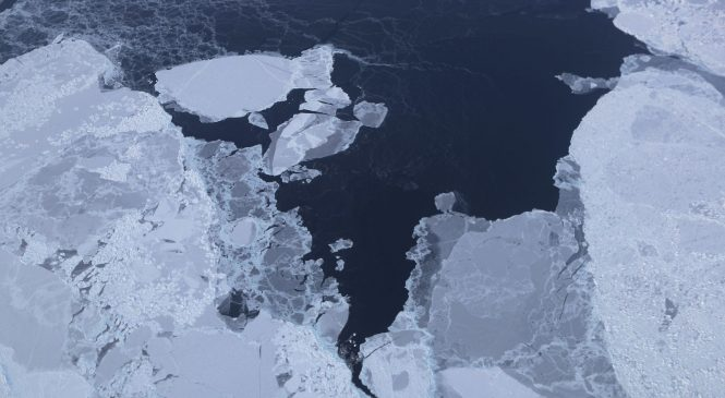 """Já estamos no """"pior cenário"""" do derretimento das camadas de gelo, alerta pesquisa"""