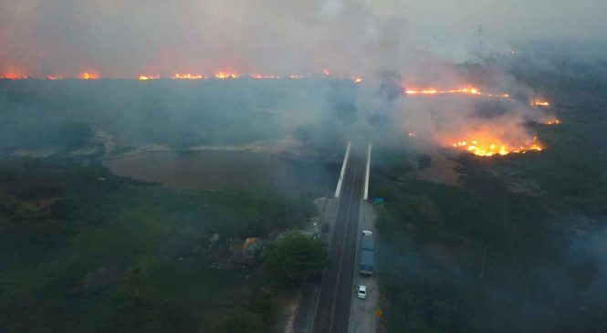 """Ministro diz que """"Deus está com Bolsonaro"""" após chover no Pantanal"""