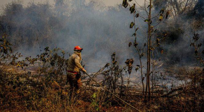 Deputados vão sugerir a Maia votação de seis propostas da pauta ambiental