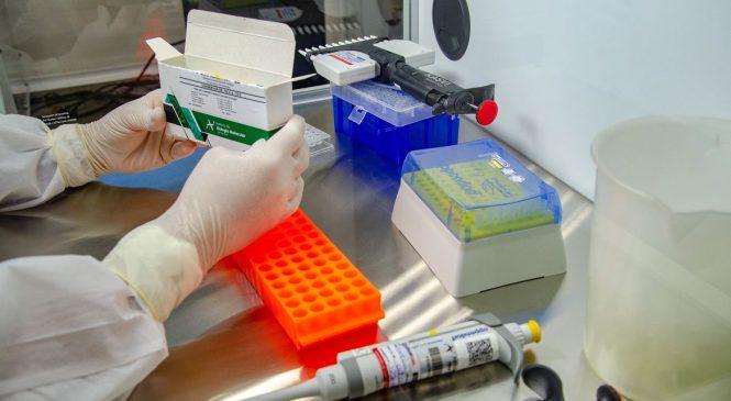 Fiocruz entrega 2,2 milhões de doses de vacinas contra covid-19
