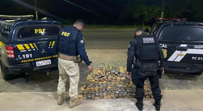 Operação conjunta apreende em Alagoas 170kg de maconha
