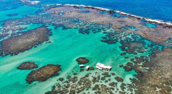 MPF vai à Justiça para que IMA/AL adeque licenciamentos na APA Costa dos Corais