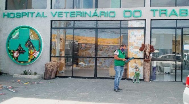 Prefeitura notifica hospital veterinário por maus-tratos contra animais
