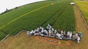 Empresários ruralistas e evangélicos fazem ato em Brasília neste sábado em apoio a Bolsonaro