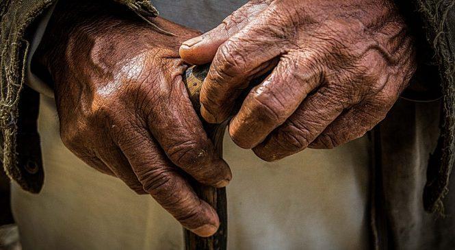 A velhice, segundo o Pife