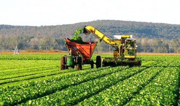 Após recuo da Fiesp, Agroindústria publica forte manifesto em favor da democracia