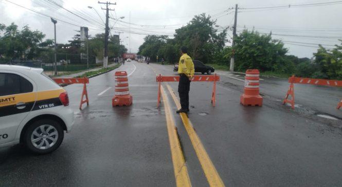 SMTT libera Avenida Jorge Montenegro de Barros após remoção de árvores
