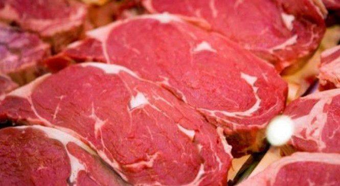 Com exportação de carne proibida, produtores querem solução rápida para caso da vaca louca