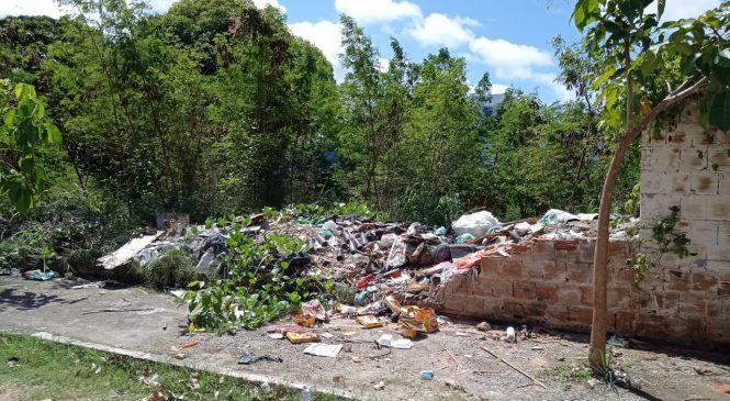 Prefeitura de Maceió orienta que população denuncie terrenos abandonados
