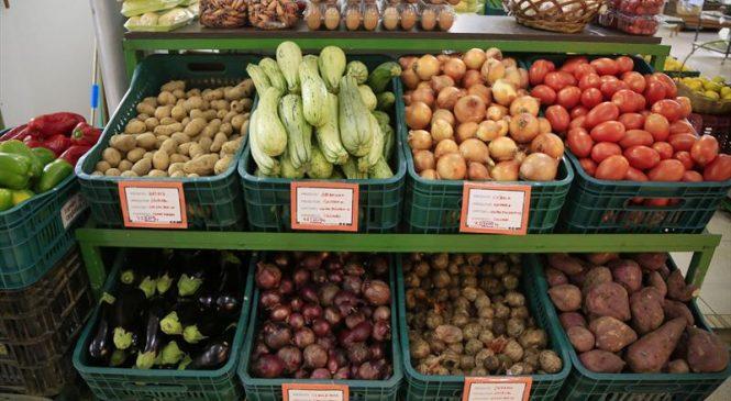 Inflação sem controle faz preço de produtos iguais variar até 578%